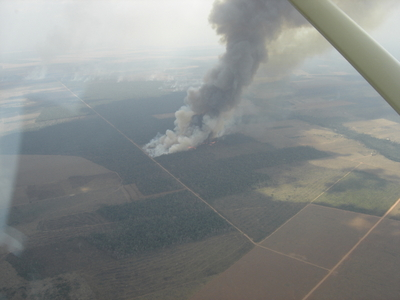 View from a plane, north of Mato Grosso - Brazil, 2007. Photo by Deborah Icamiaba.